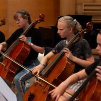 Limburgs Cellofestival in Weert
